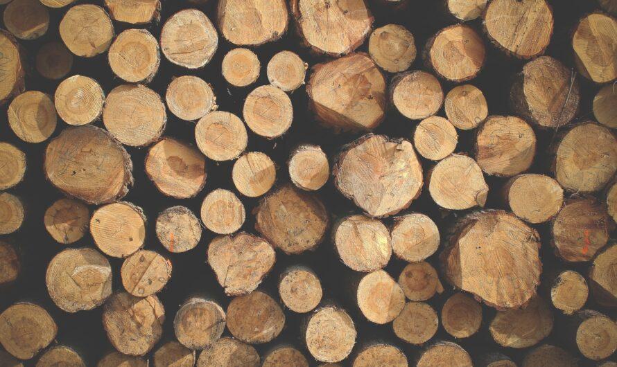 Hos Himmerlands Pejsecenter finder du bl.a. en HWAM brændeovn og en pilleovn i god kvalitet