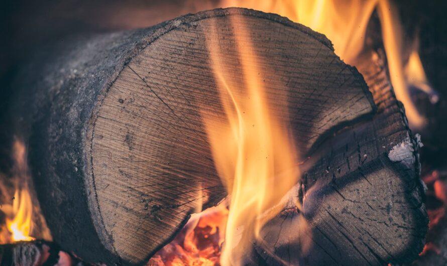 Hos Den Gamle Brugs forhandles bl.a. brænde og 8 mm træpiller til skarpe priser